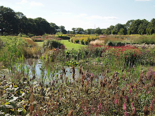 Sussex Prairies Garden. Amazing flowers and good example of garden design. The pond is surrounded by colourful flowers and pond plants