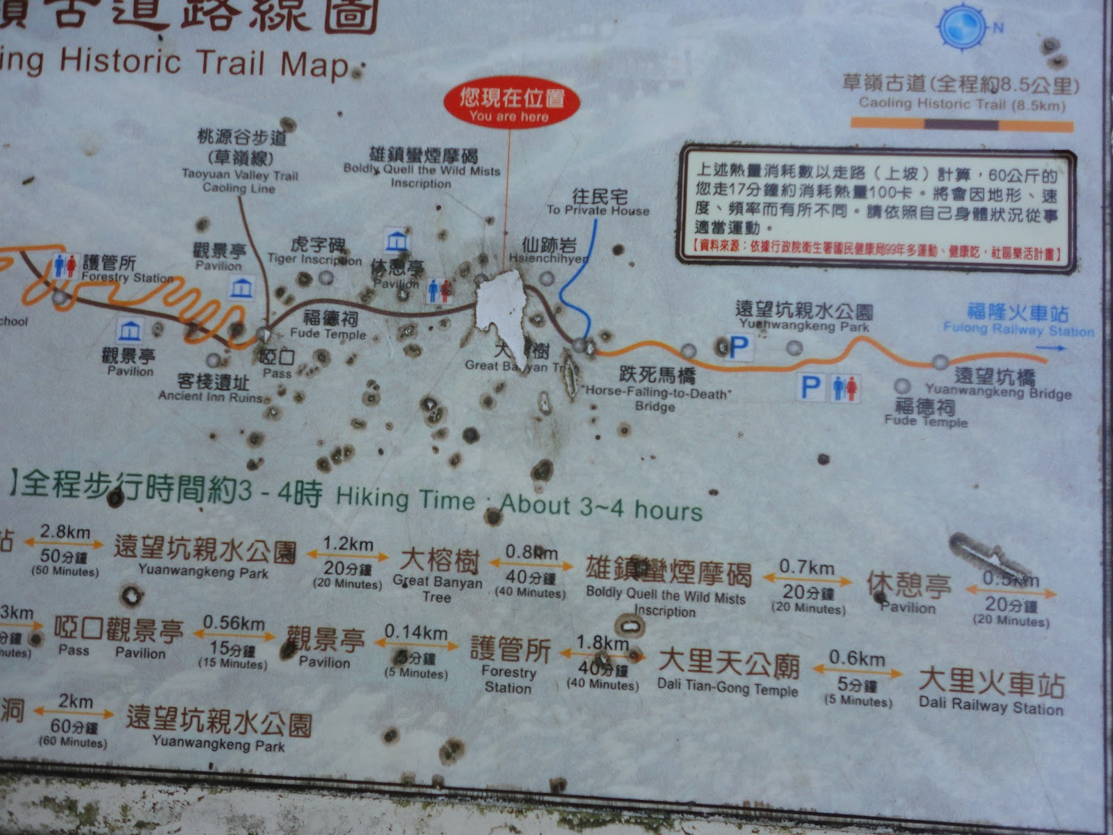 Hiking the Caoling Historical Trail (草嶺古道) - The Free-Spirited ...
