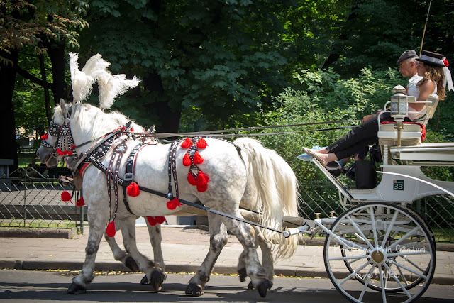 city-break-krakow-horse-ride