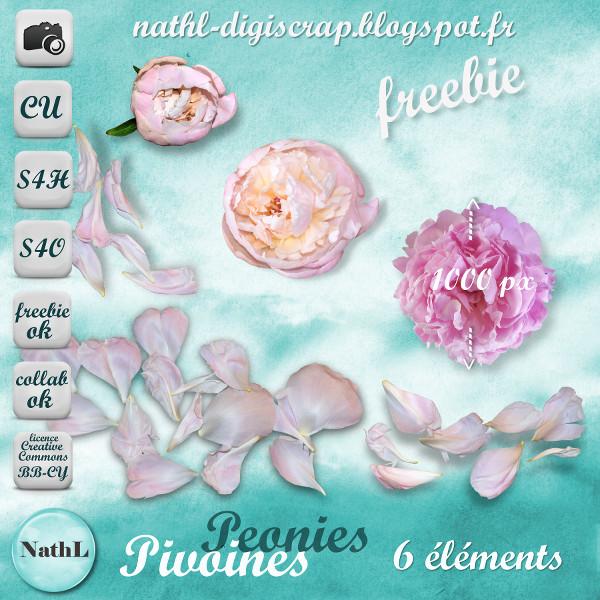 Peonies 2014 NathL-CU_pivoine-2014-pvw