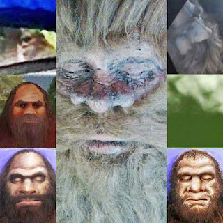 Faces Of Hank The Bigfoot Hoax