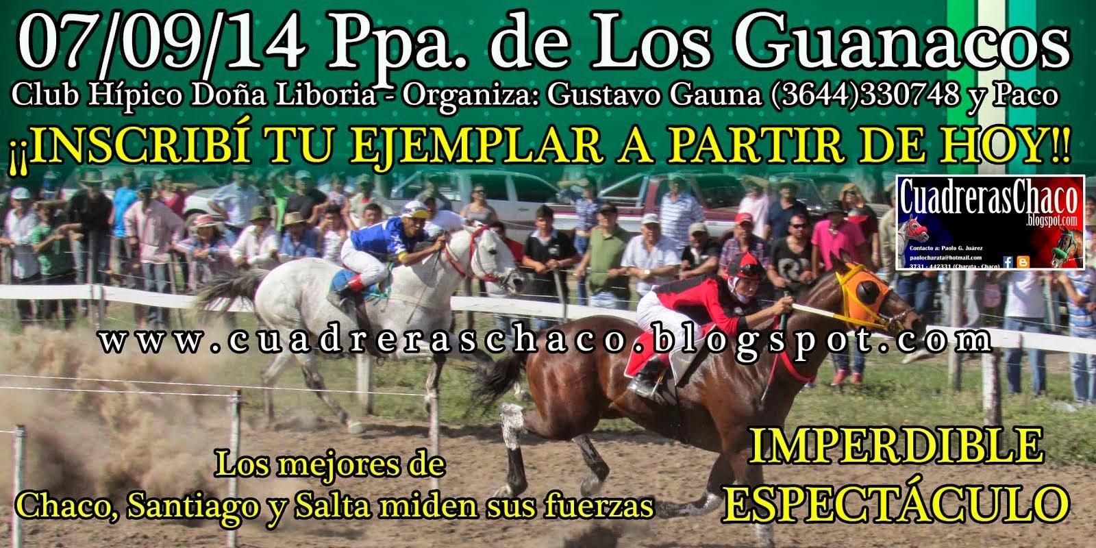 GUanacos 7-9