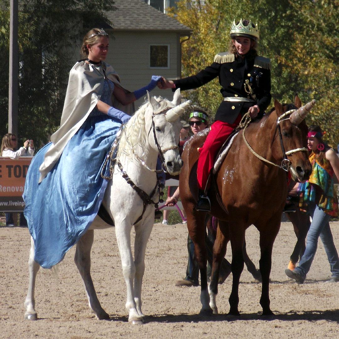 Pony Costume Ideas Horse Fancy Dress Ideas