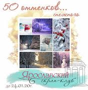 50 оттенков... снежного до 24.01.20