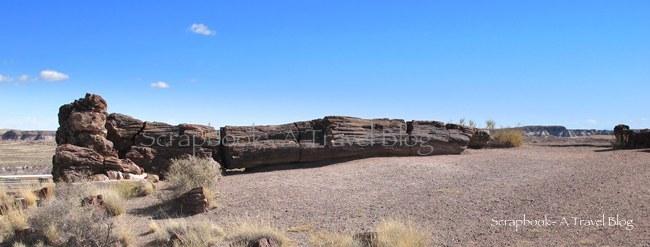 Old Faithful at Petrified Forest National Park Arizona