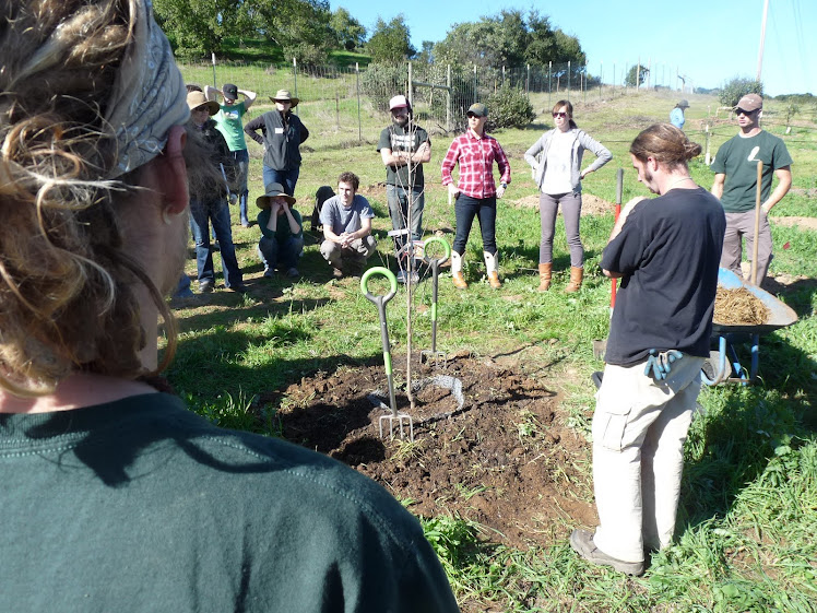 Fruit Tree Planting Demonstration
