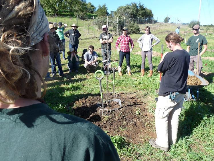 Fruit Tree Planting Demonstration