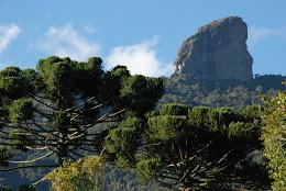 Projeto de criação do Monumento Natural Municipal da Pedra do Picu