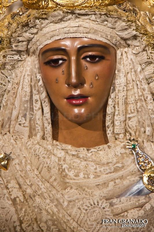 http://franciscogranadopatero35.blogspot.com/2014/12/diciembre-desoja-la-flor-mas-bonita-de.html