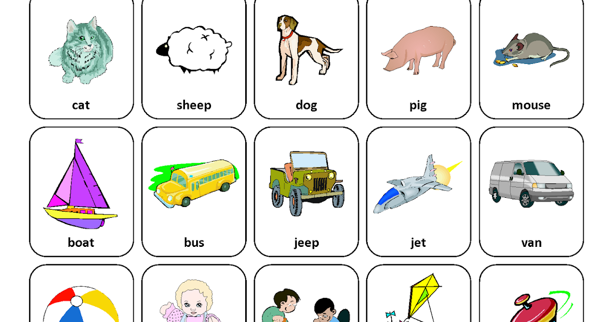 Sorting By Categories Speech Therapy Picture Cards Page on kindergarten homework sheets