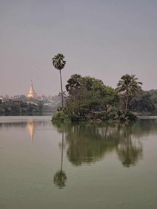 Kandawgyi Lake and Shwedagon Pagoda