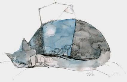 El gato y La noche