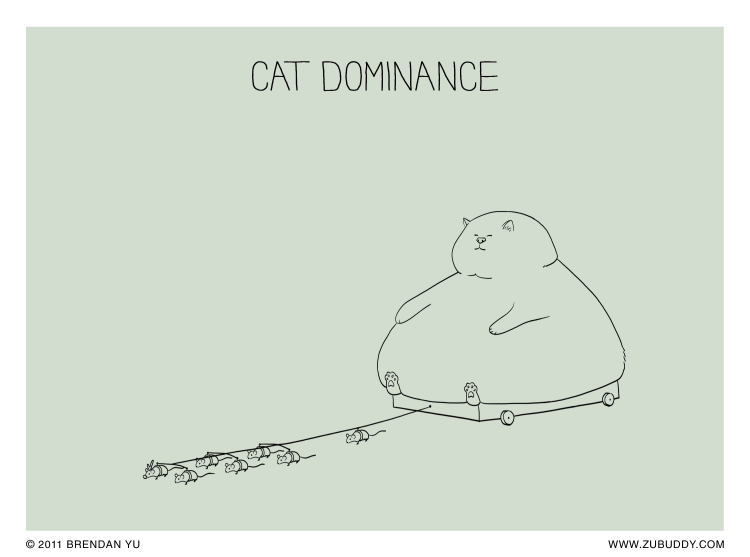 Cat Dominance