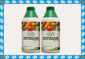 Chitosan ไคโตซาน เพิ่มผลผลิต และต้านทานโรคให้พืชผัก