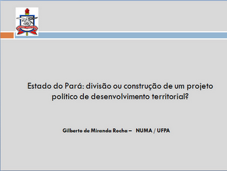 Divisão do Pará - Um estudo de caso