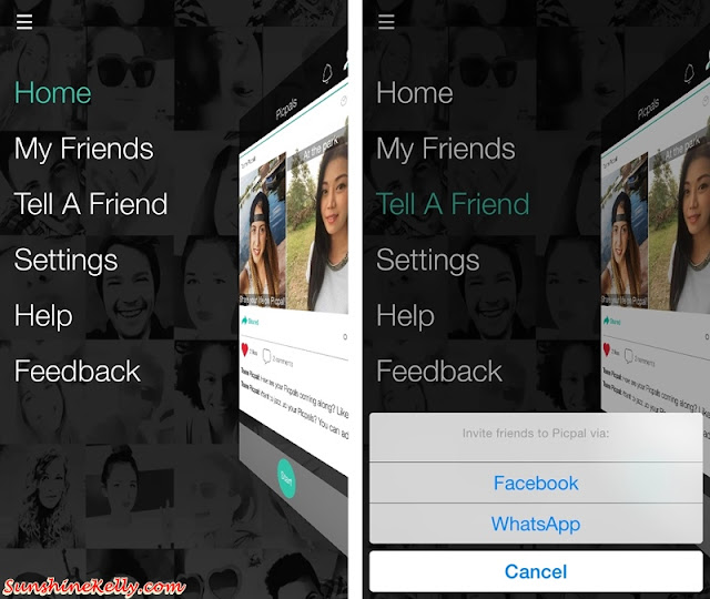 PicPal, PicPal App, Real Time Selfie Collage with Friends