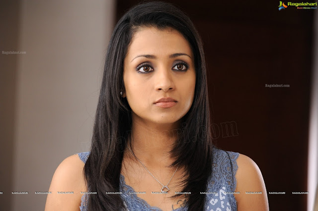 Trisha krishnan in samar movie