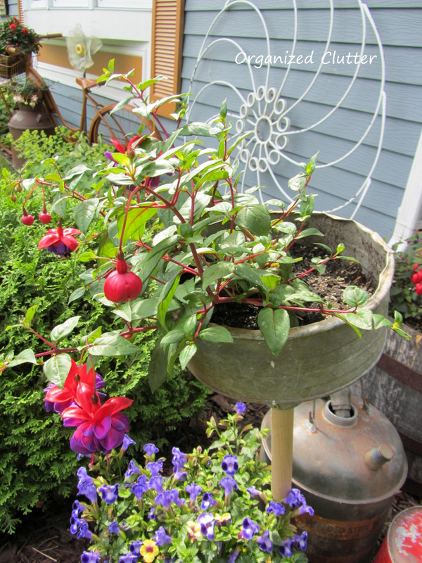 Funnel on a Dowel Planter www.organizedclutterqueen.blogspot.com