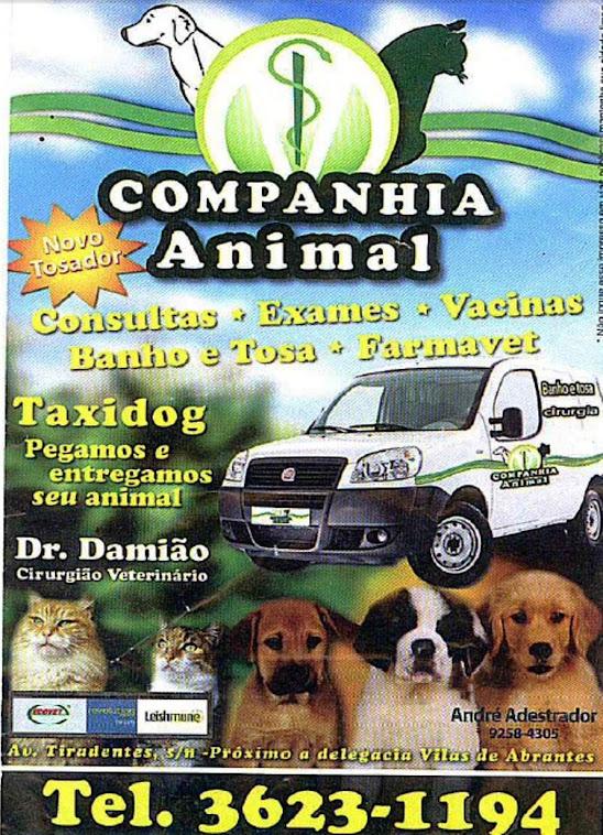 DR.DAMIÃO