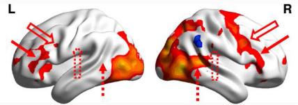 図:ミラーニューロンシステム