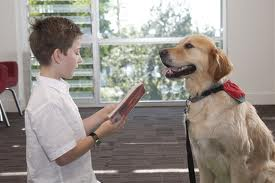 Learning to Read is Fun when Reading with a Dog