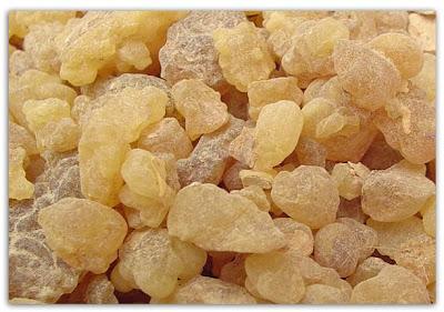 al lubban libanah kemenyan arab mesir khasiat mengubati penyakit kelupaan, mngurangkan kahak dan lendir dalam tekak, makanan imam syafie