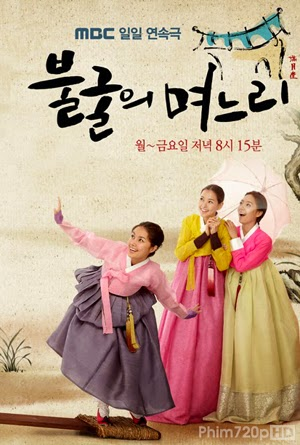 Indomitable Daughters in Law 2012 poster