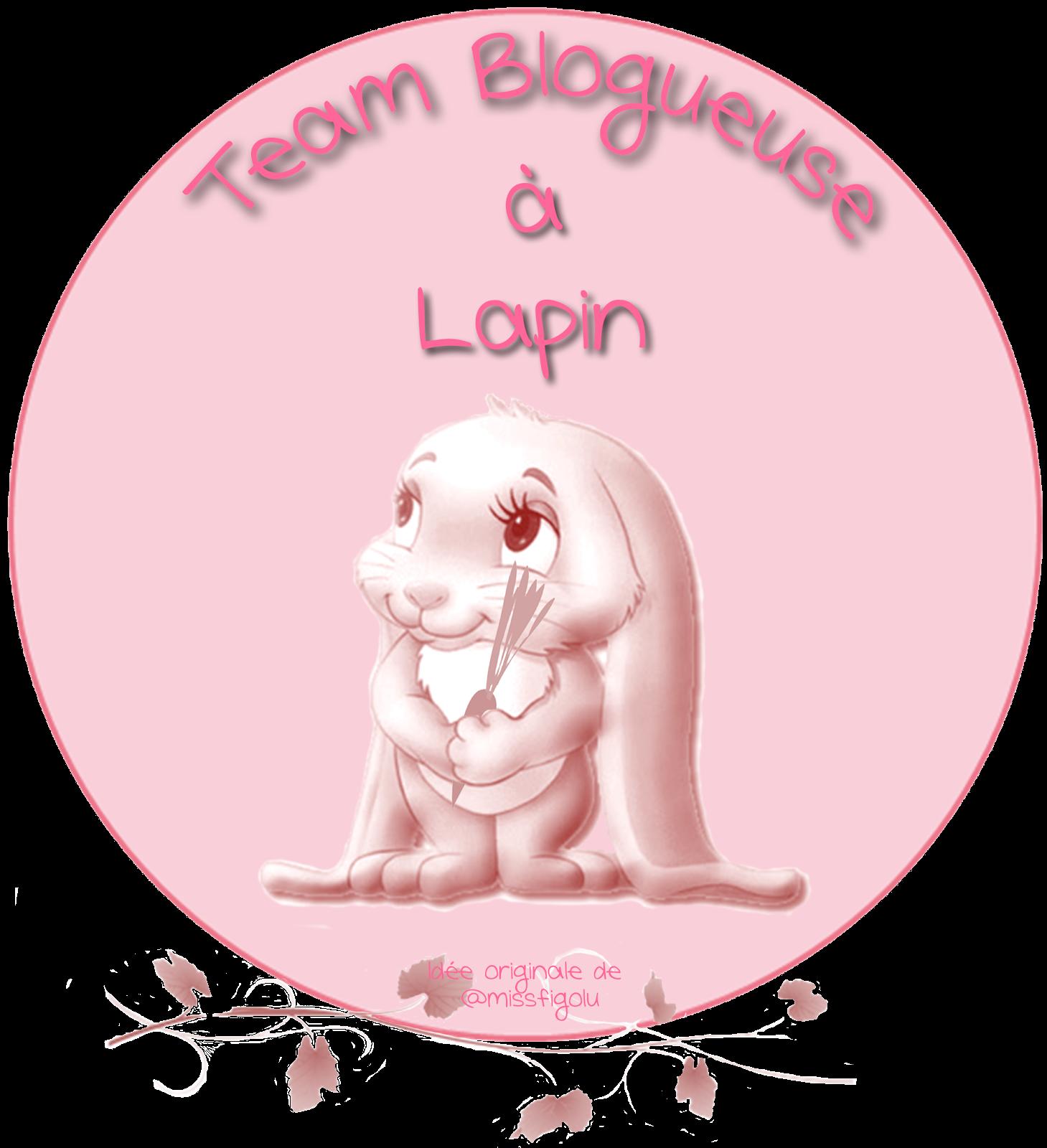 Team Lapin :