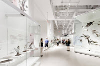 13 Museo Canadiense de la Naturaleza por los arquitectos KPMB