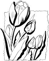 Tulipános színező