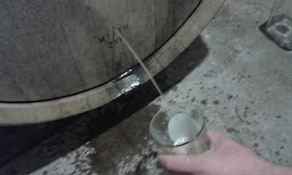 Wort coming out of the sample port.