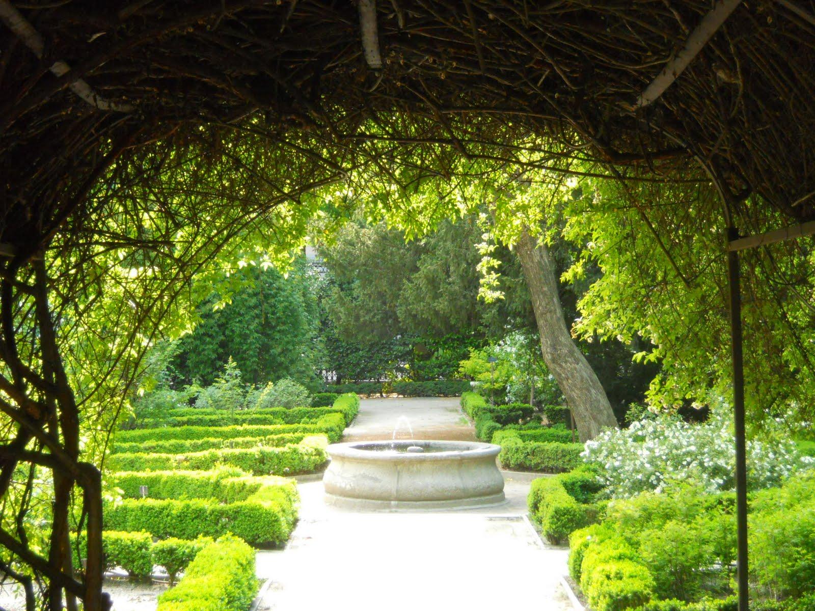 Mi casa es mi mundo el jard n bot nico for Casa jardin botanico