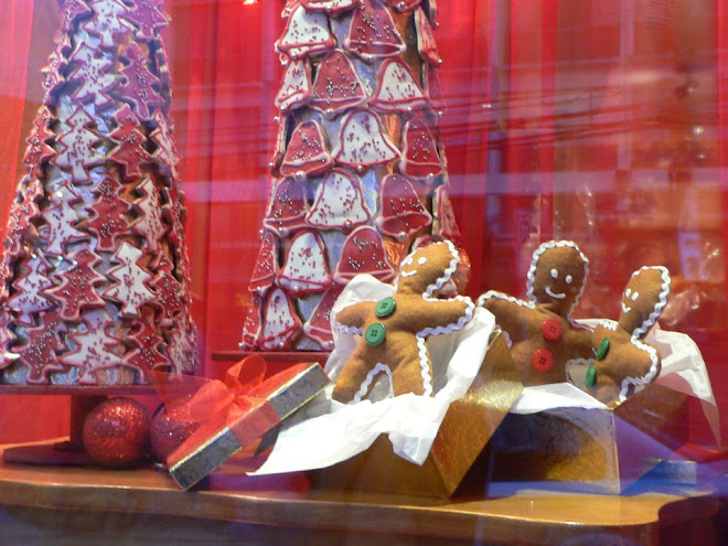 Xmas Display Window