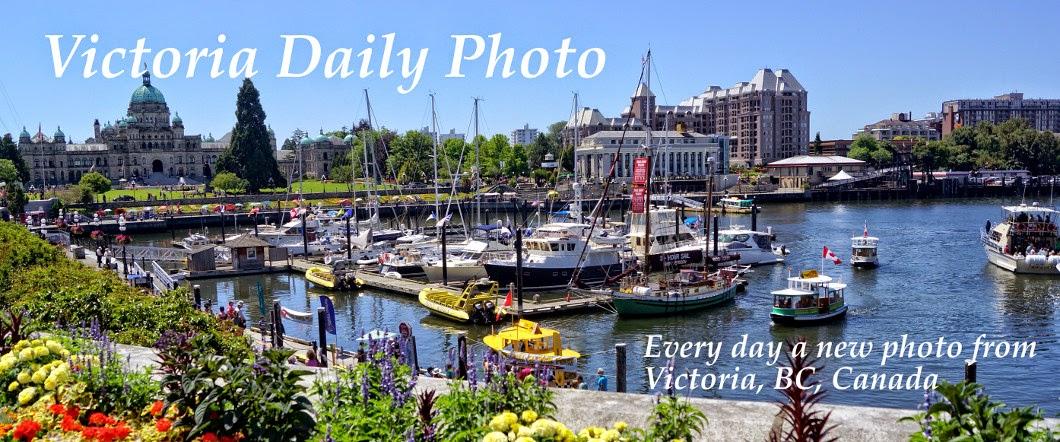 Victoria Daily Photo