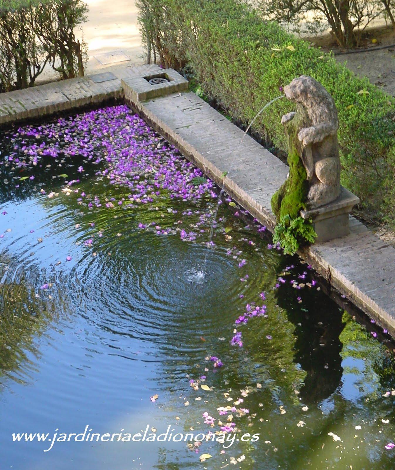 Jardineria eladio nonay agua en el jard n jardiner a - Jardineria eladio nonay ...