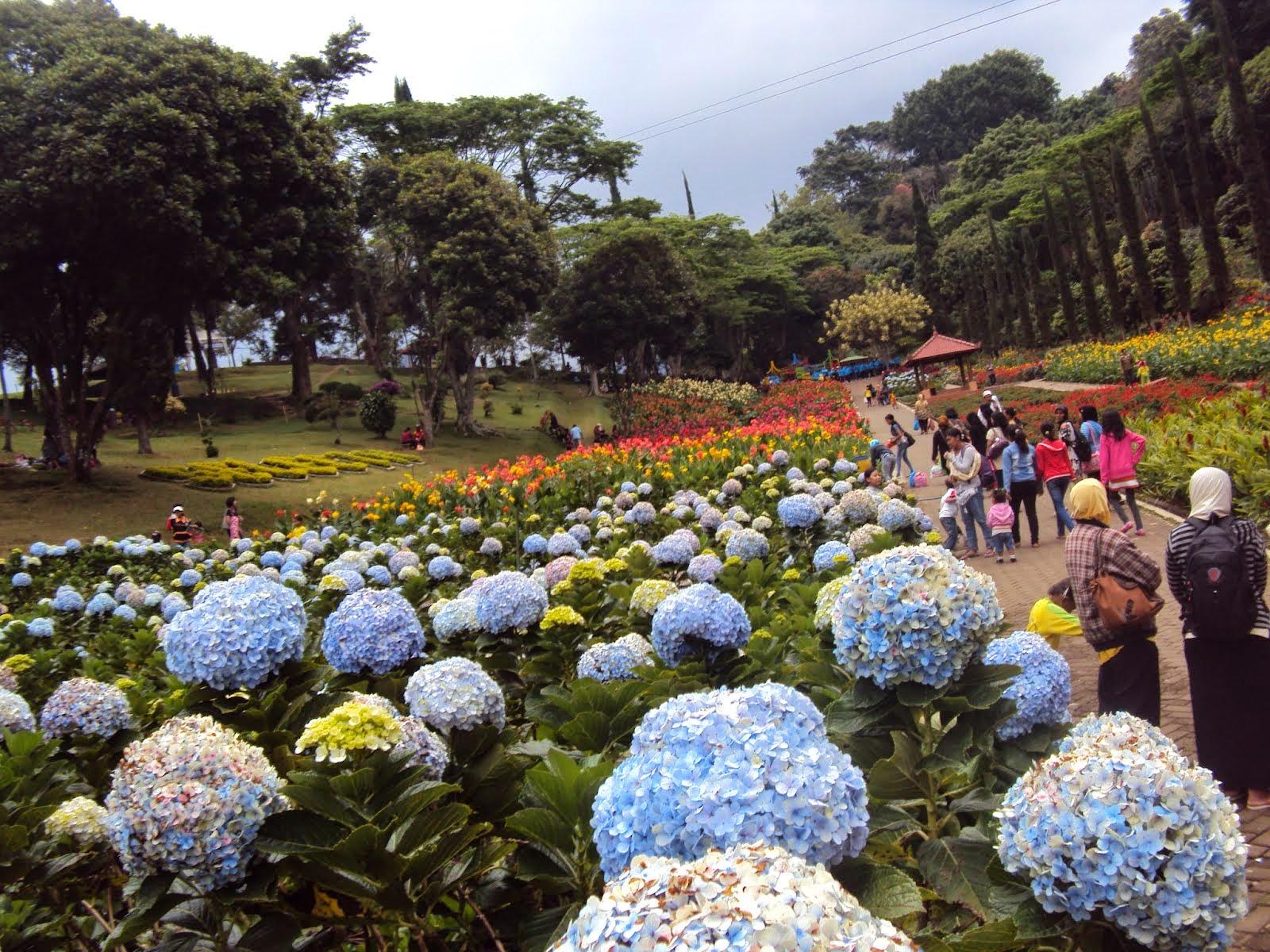 Tempat Wisata di Malang untuk keluarga