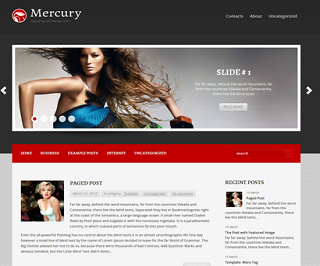 Mercury-Blogger-Template