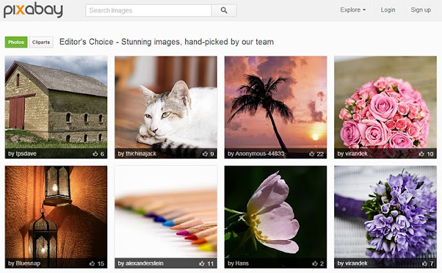 Top 10 Places to Find Free Stock Images For Your WordPress Site