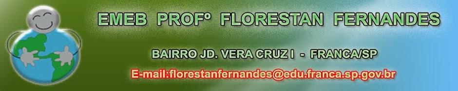 EMEB FLORESTAN FERNANDES