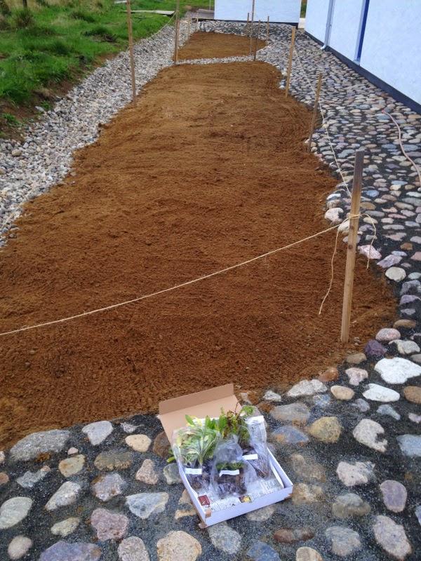 Villa Natura ekologiskt lågenergihus Österlen planter äng Pratensis