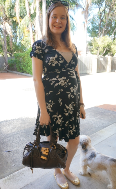 Away From Blue | Second Trimester Office Wear floral wrap dress Chloe paddington