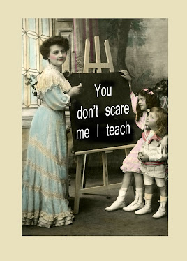 You Don't Scare Me I Teach