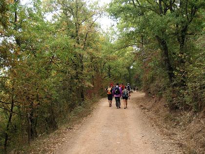 Caminant a prop del mas Colldarnau