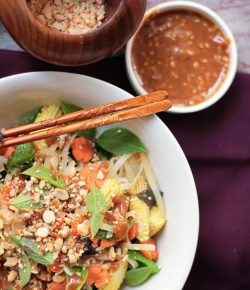 Stir Fried Noodles with Thai Peanut Sauce and spices basil, sesame seed
