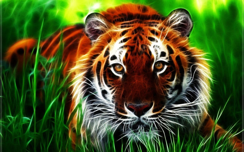 Imagem de Fundo - Desenho de tigre