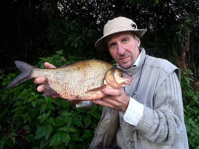 A rare Coventry Canal rudd x bream hybrid