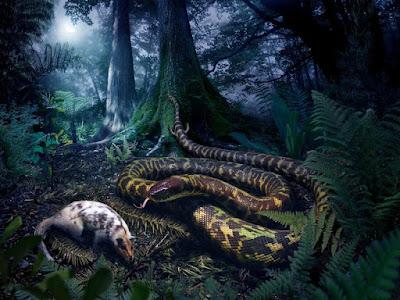 A mãe de todas as cobras
