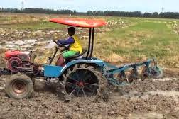 Masa Depan Petani di Jawa dan Solusi Rental Traktor