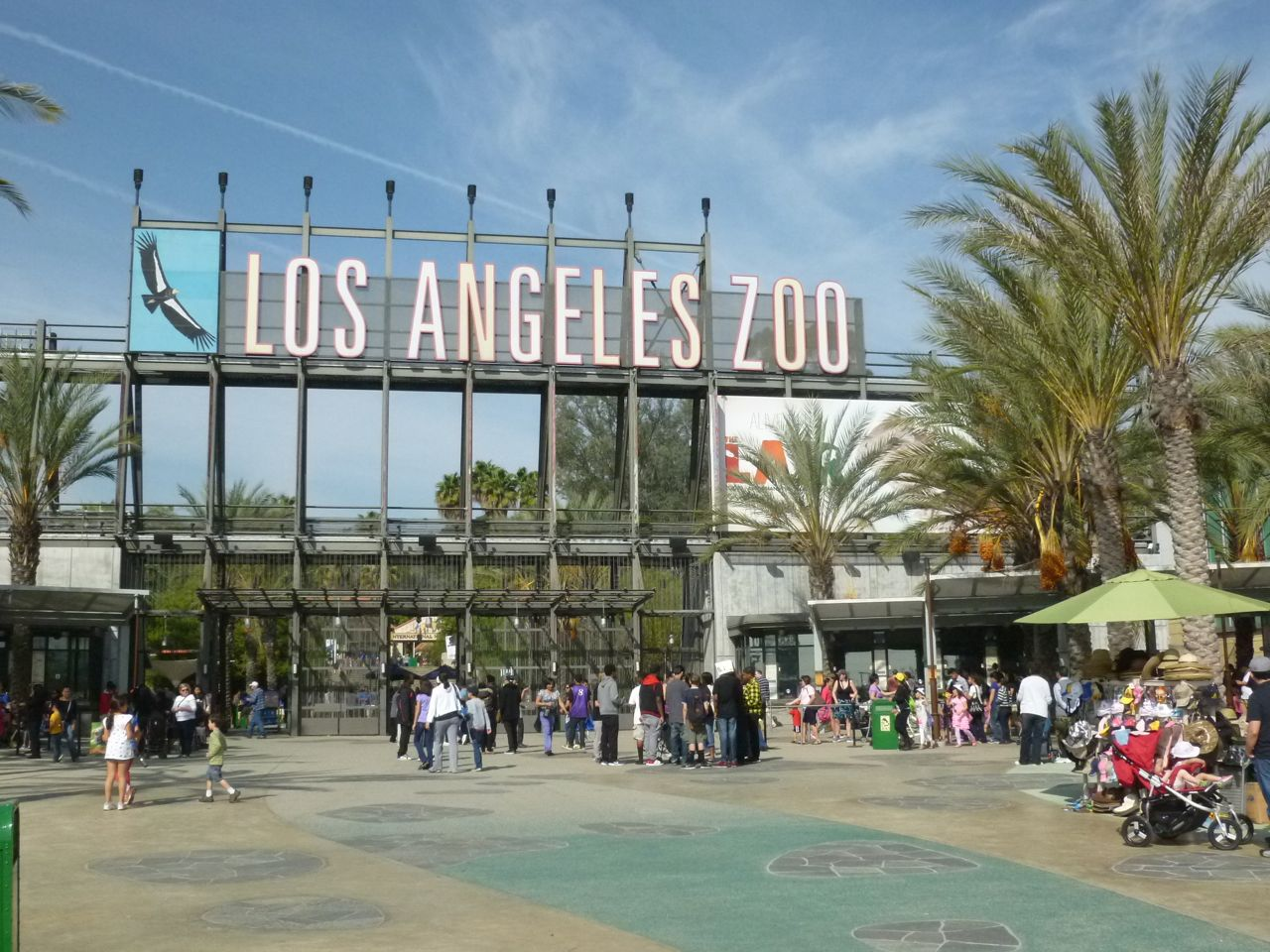 experiencing los angeles los angeles zoo and botanical gardens