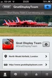 Gnat Display Team